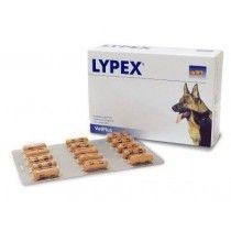 Lypex-Blister