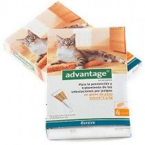 Advantage-40-Gatos-4-Pipetas-(-4-kg)