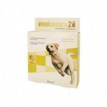 Omnicondro-20