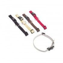Collar-Clásico-de-Nylon-25-mm-50-65-cm-Color-Gris