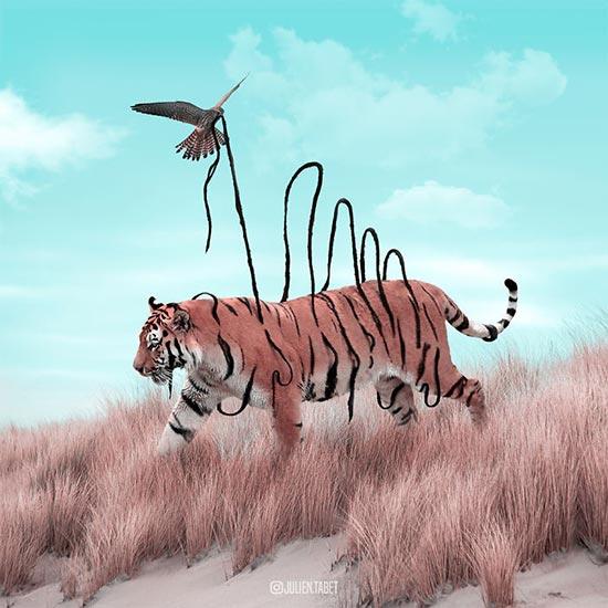 Julien Tabet foto animal 4 1 - Cómo ve los animales el artista francés Julien Tabet